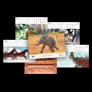 Kalender_17_blog